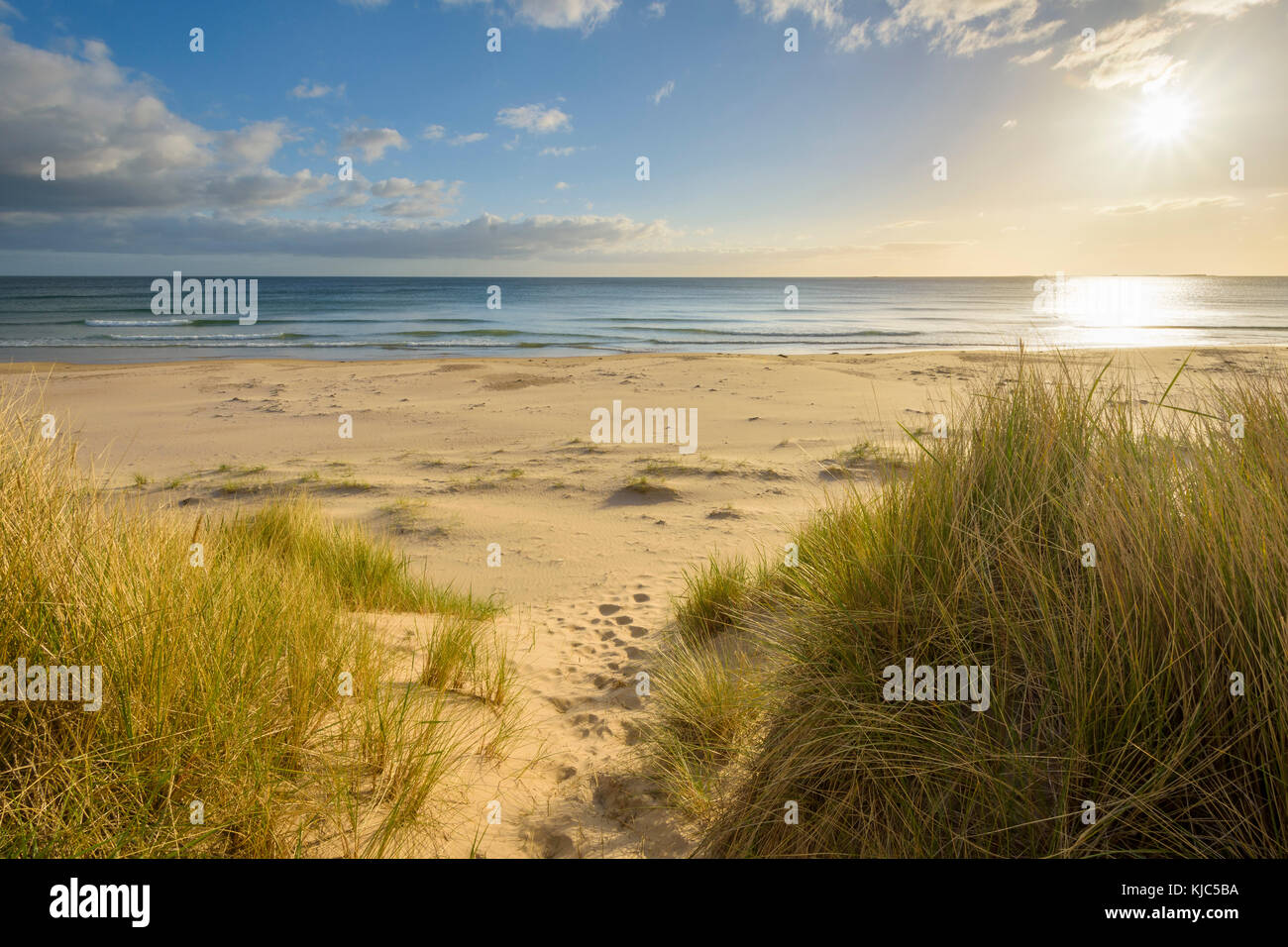 Path through sand dunes at sunrise over the North Sea at Bamburgh in Northumberland, England, United Kingdom - Stock Image