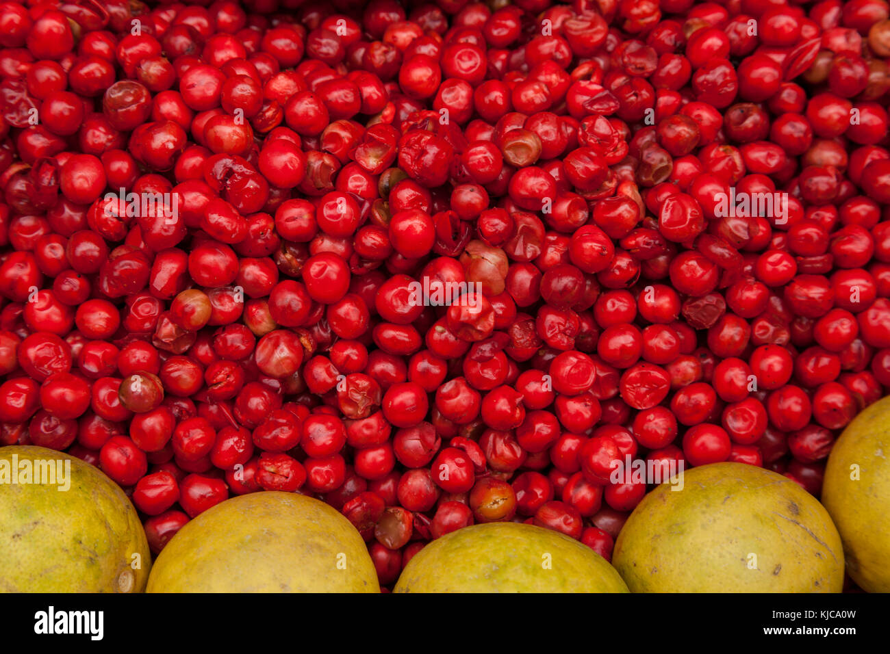 Grapefruit and red berries in Charminar Market, Hyderabad, India. - Stock Image
