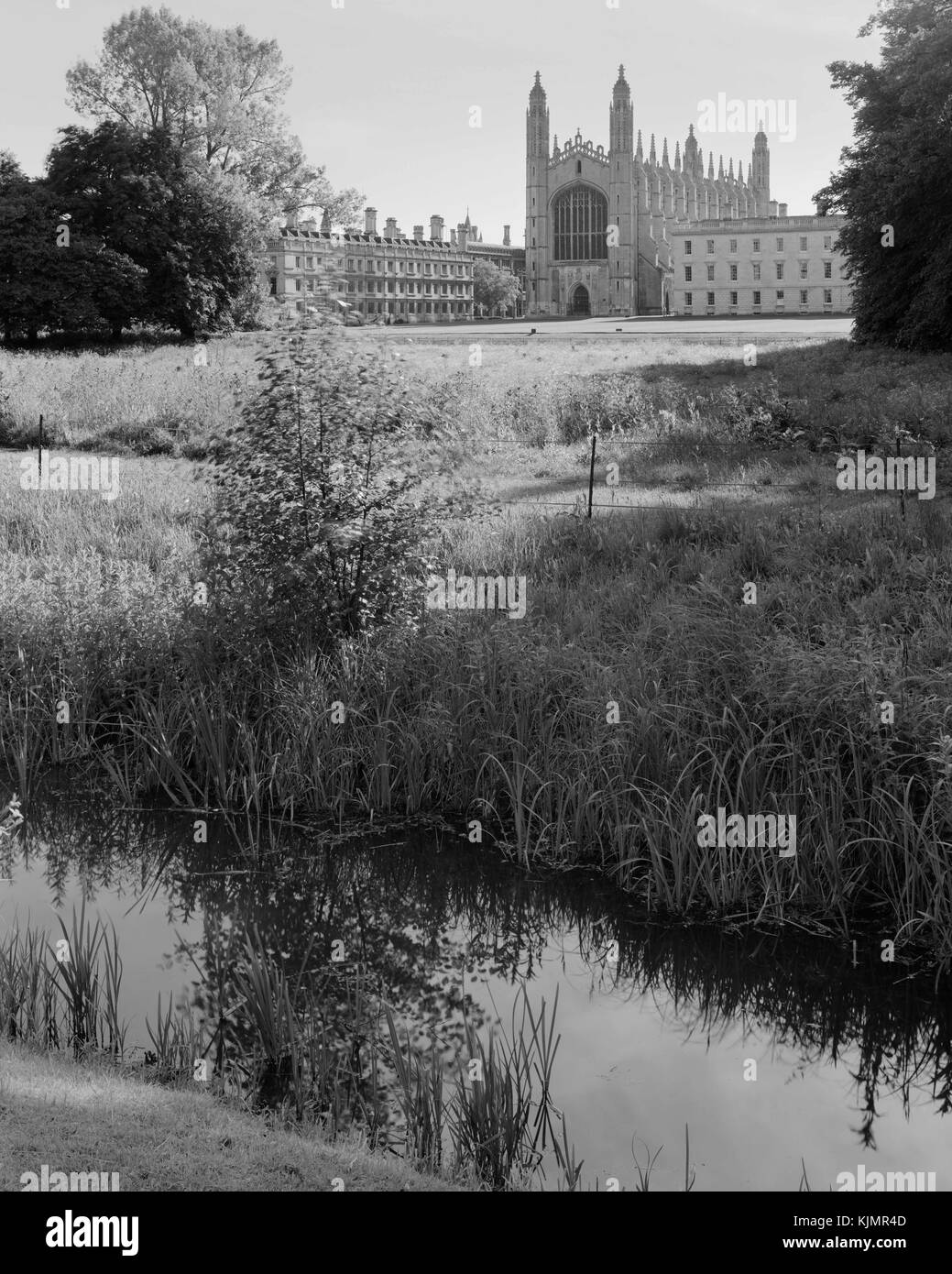 King's College Chapel and Clare College Cambridge from the Backs - Stock Image