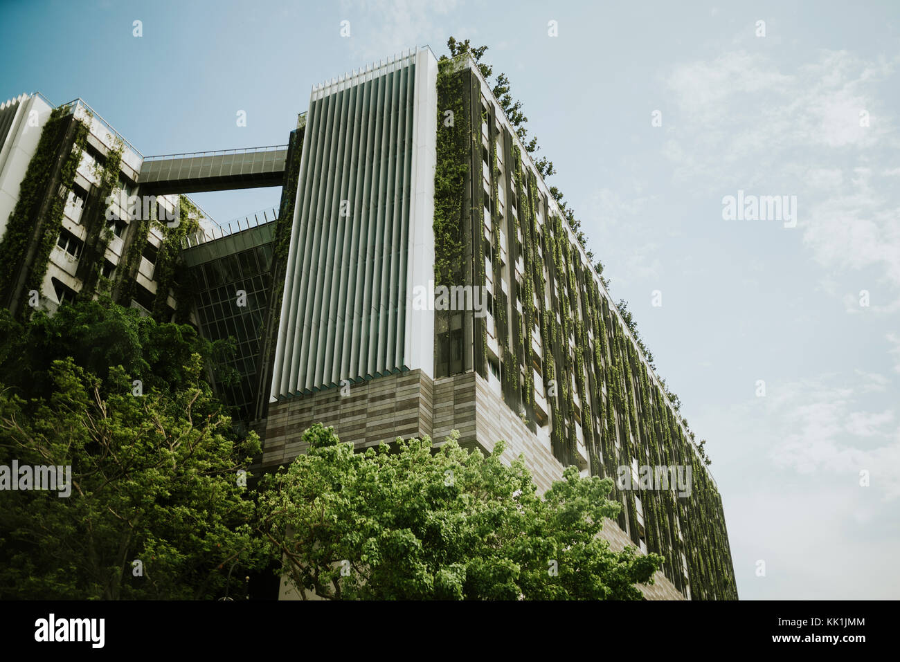 Modern green building in Singapore - Stock Image
