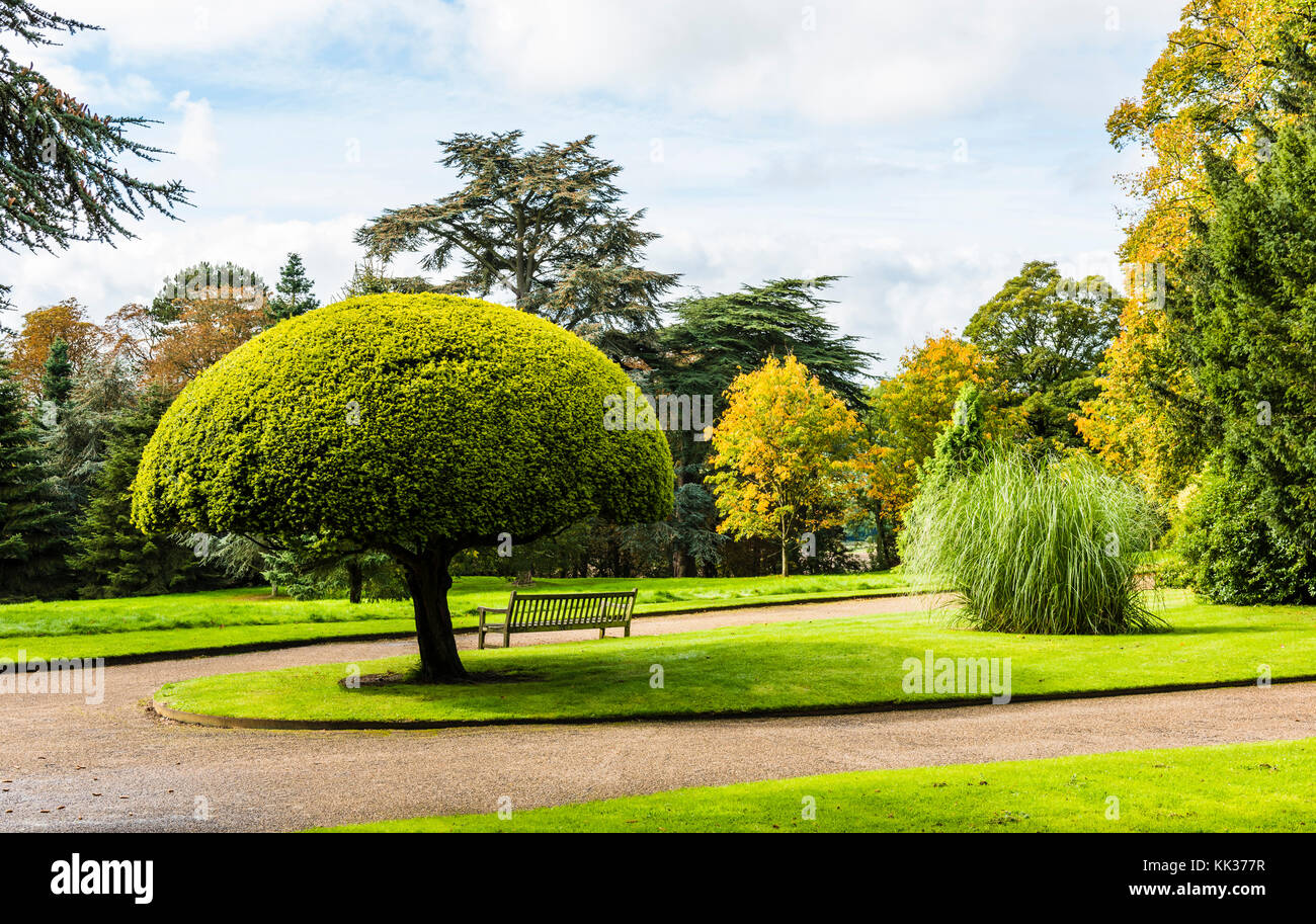Clipped trees and gardens at Waddesdon Manor, Buckinghamshire, UK - Stock Image