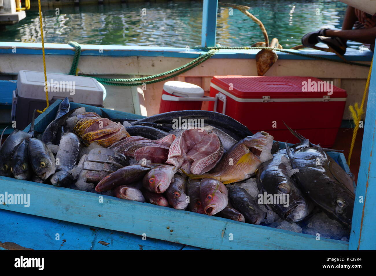 Willemstad curacao shopping stock photos willemstad for Fresh fish market miami