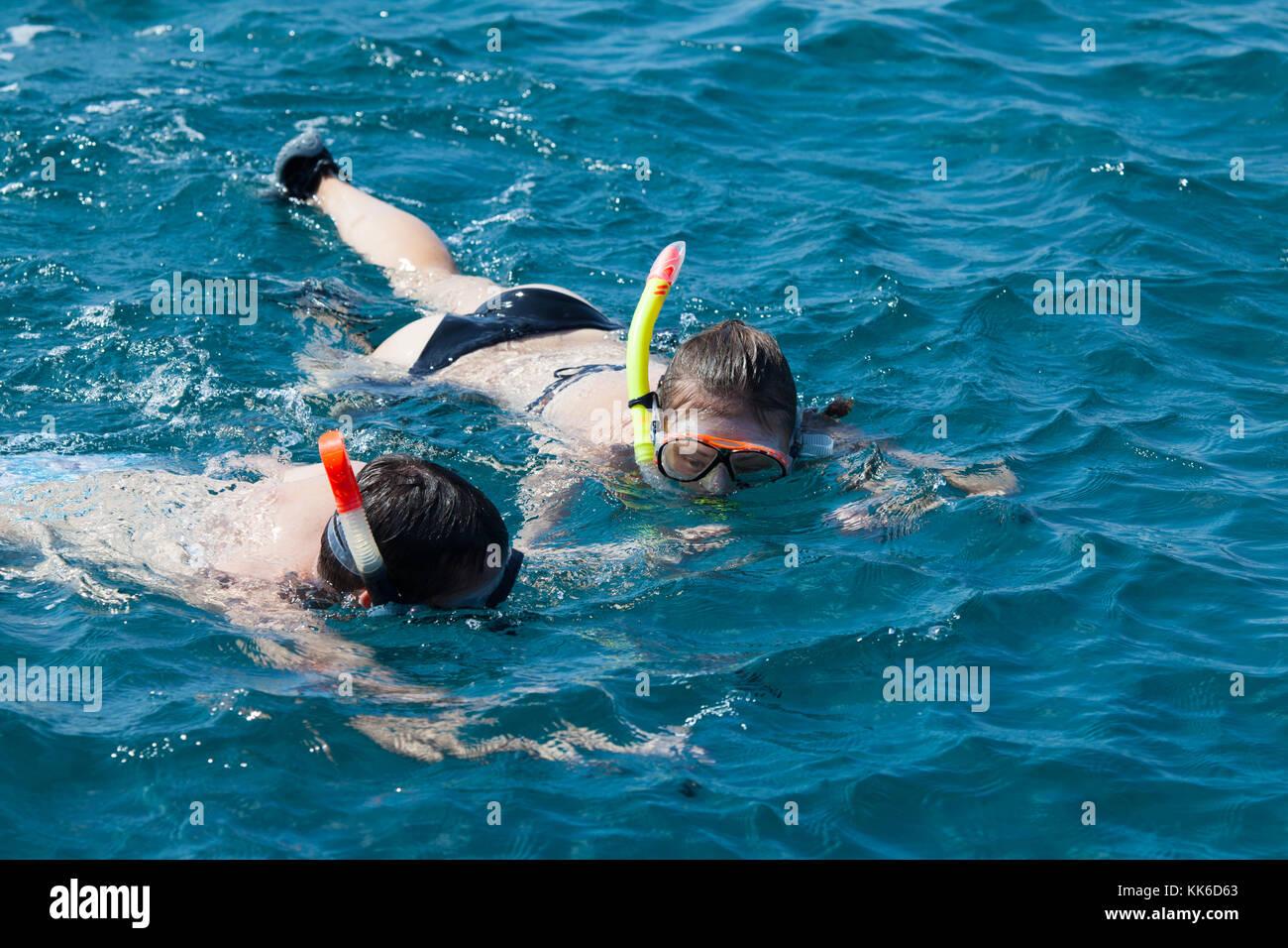 Snorkeling Near South Padre Island