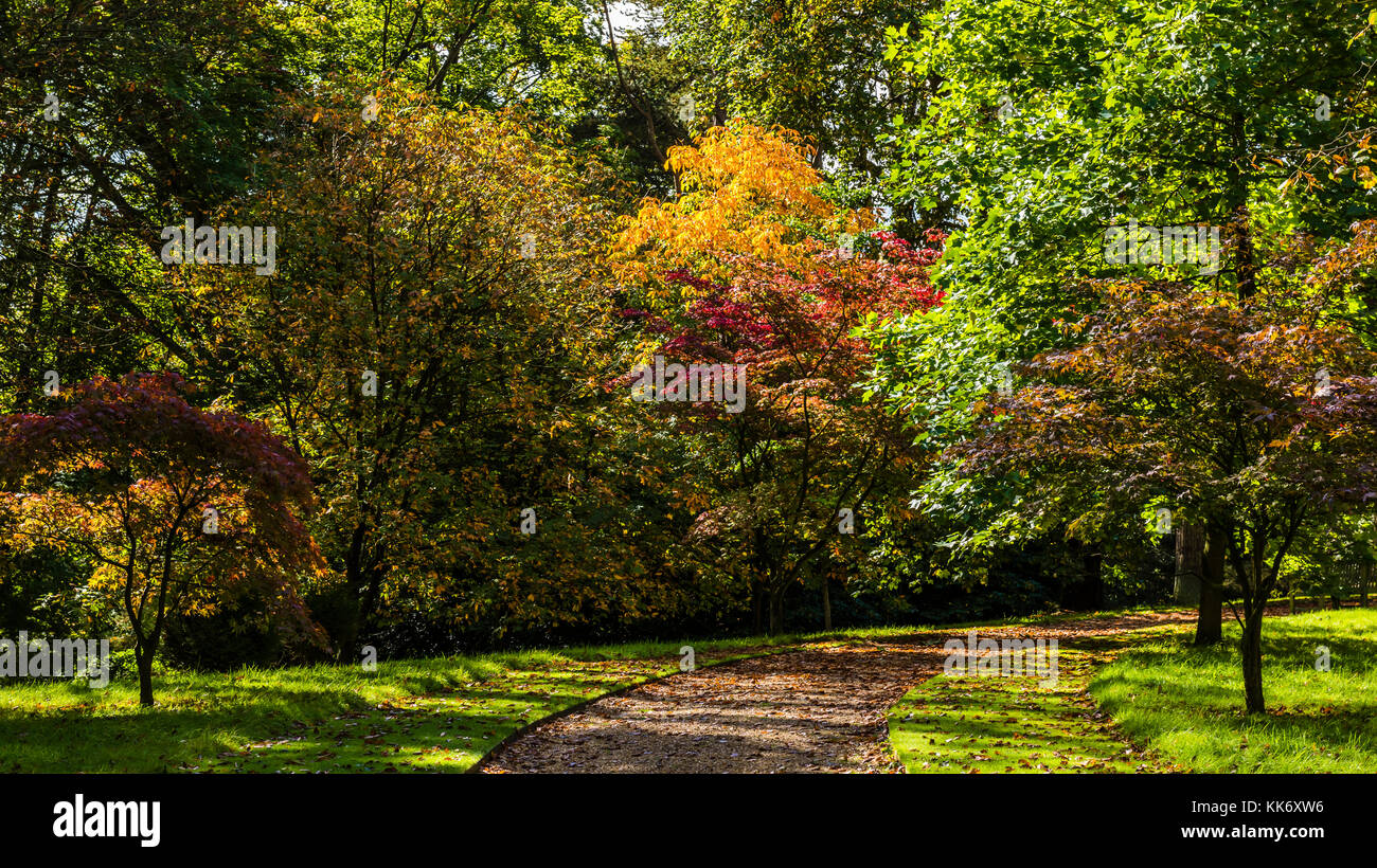 Autumn gardens at Waddesdon Manor, Buckinghamshire, UK - Stock Image