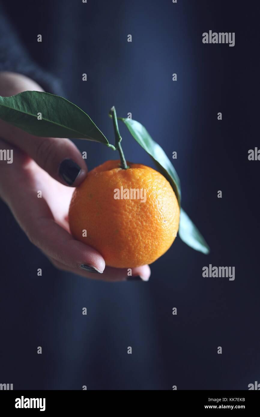 An organic tangerine - Stock Image
