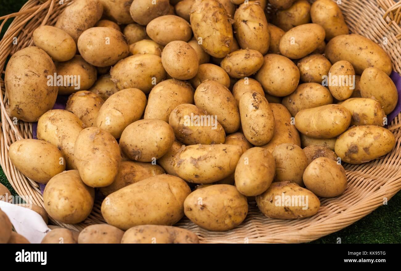 Blue Potatoes Whole Foods
