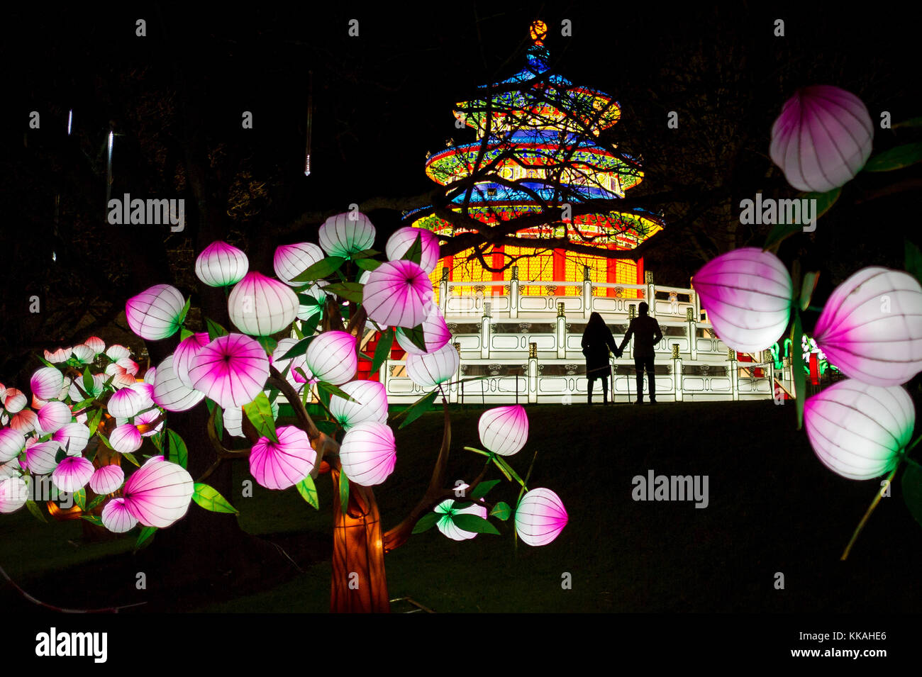 Edinburgh, UK. 29th Nov, 2017. Edinburgh UK Nov 29 2017; RZSS Edinburgh Zoo switches on over 450 colossal, lanterns - Stock Image