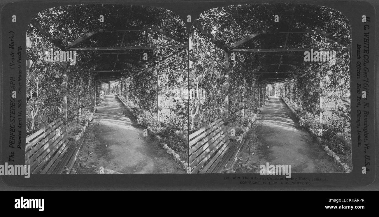 The Arbor at Constant Spring Hotel, Jamaica, 1904. From the New York Public Library. - Stock Image