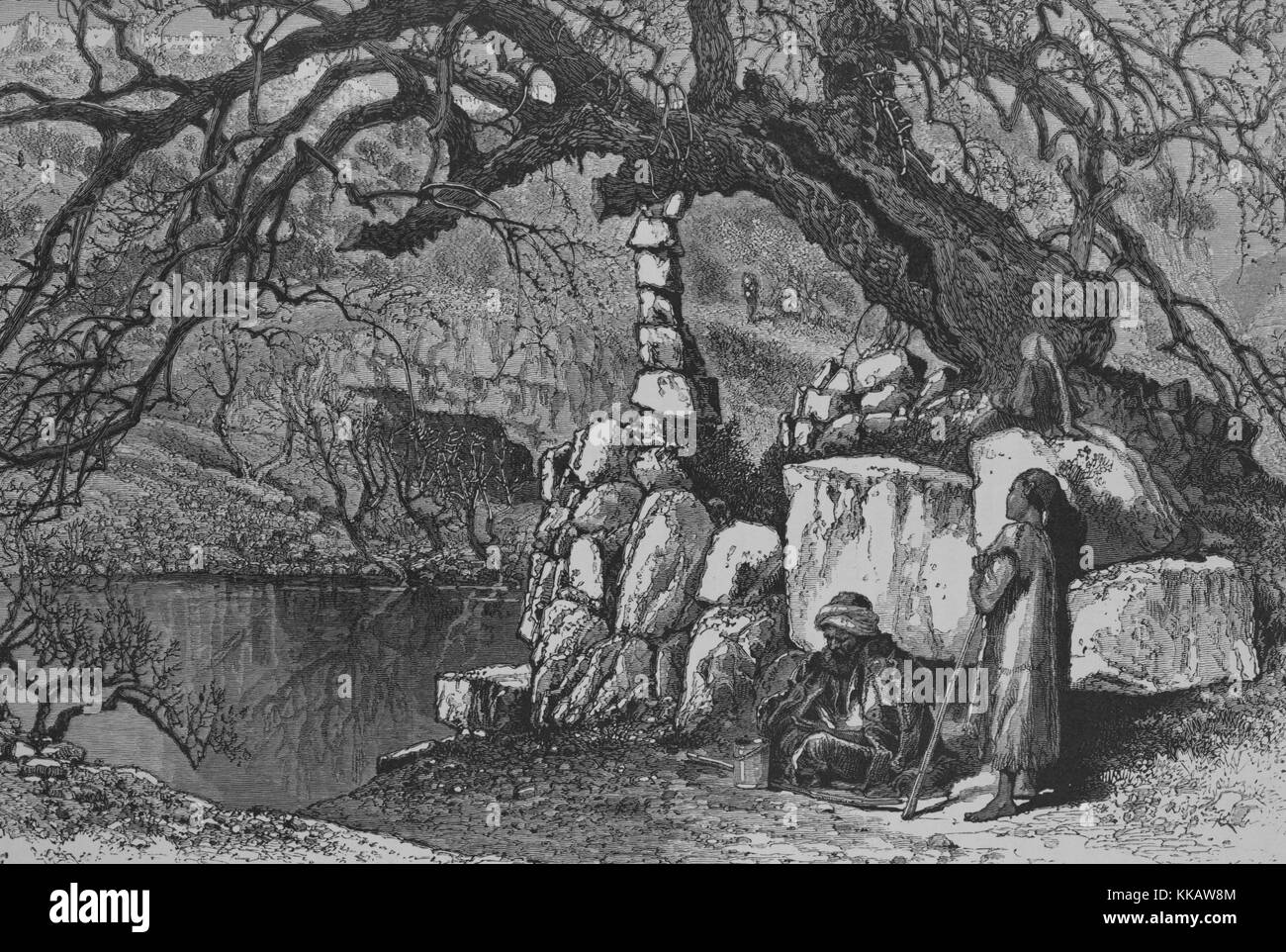 An engraving that depicts the lower Pool of Siloam, the mulberry-tree that is shown supported by stones is the supposed - Stock Image