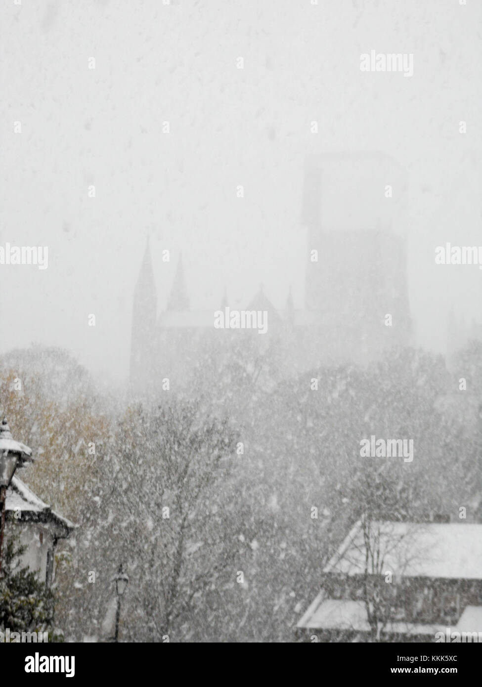 a-heavy-snowstorm-silhouettes-durham-cat