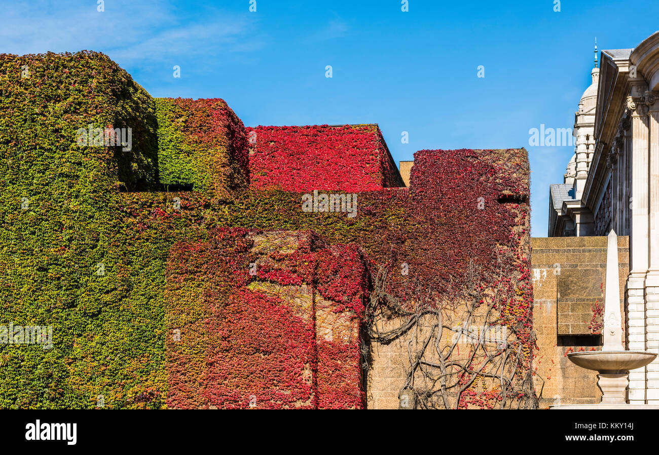 Admiralty Citadel in autumn colours, Horse Guards Parade, London, UK - Stock Image