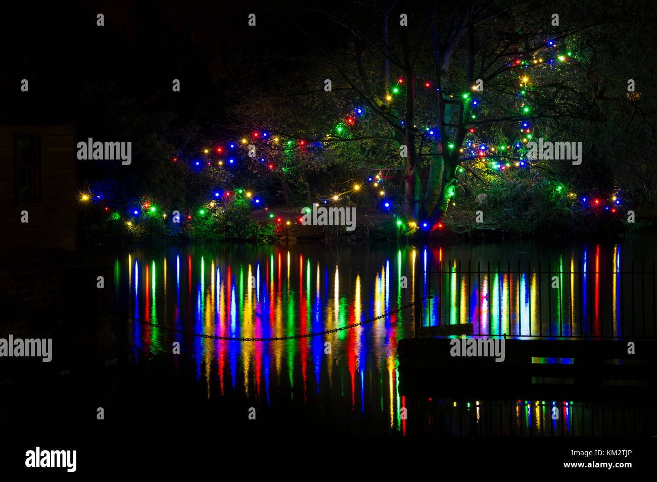The Christmas Lights on the island of Nafferton Mere reflected in the water near Driffield in East Yorkshire - Stock Image