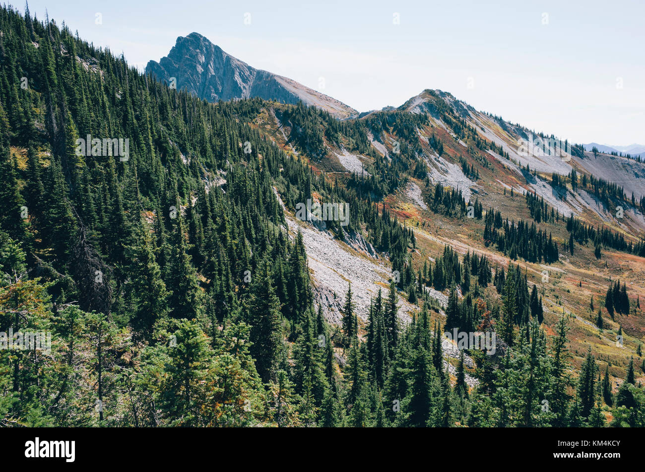 Autumn in the North Cascades, near Harts Pass, Pacific Crest Trail, Pasayten Wilderness, Washington. - Stock Image