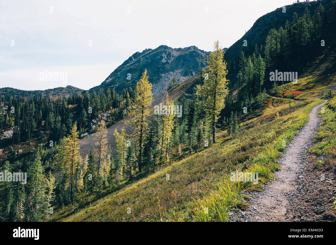 Hiking trail in the North Cascades, Pacific Crest Trail through pristine alpine wilderness, autumn, near Granite - Stock Image