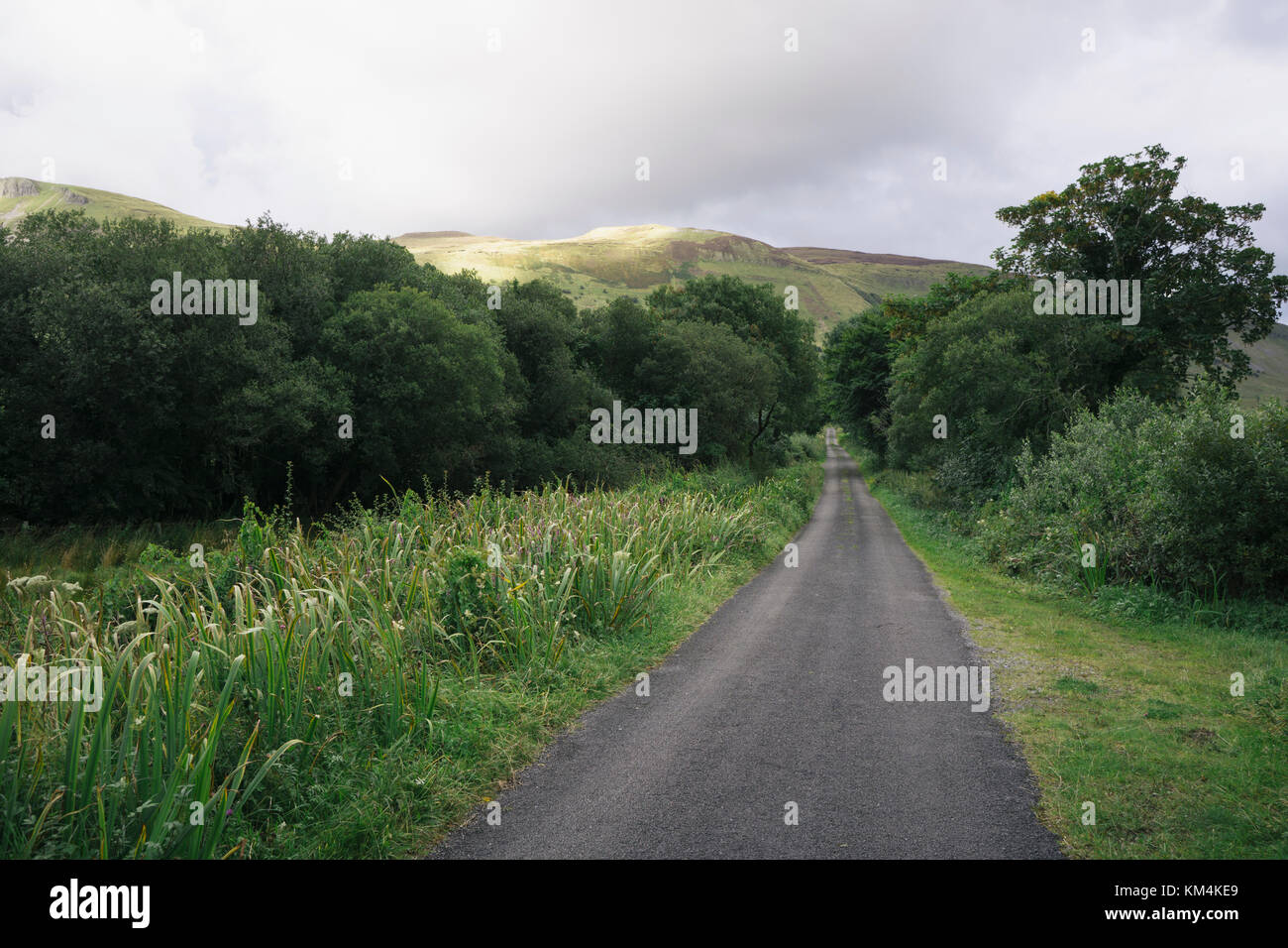 Rural single track road near Glenade, County Leitrim, Ireland. - Stock Image
