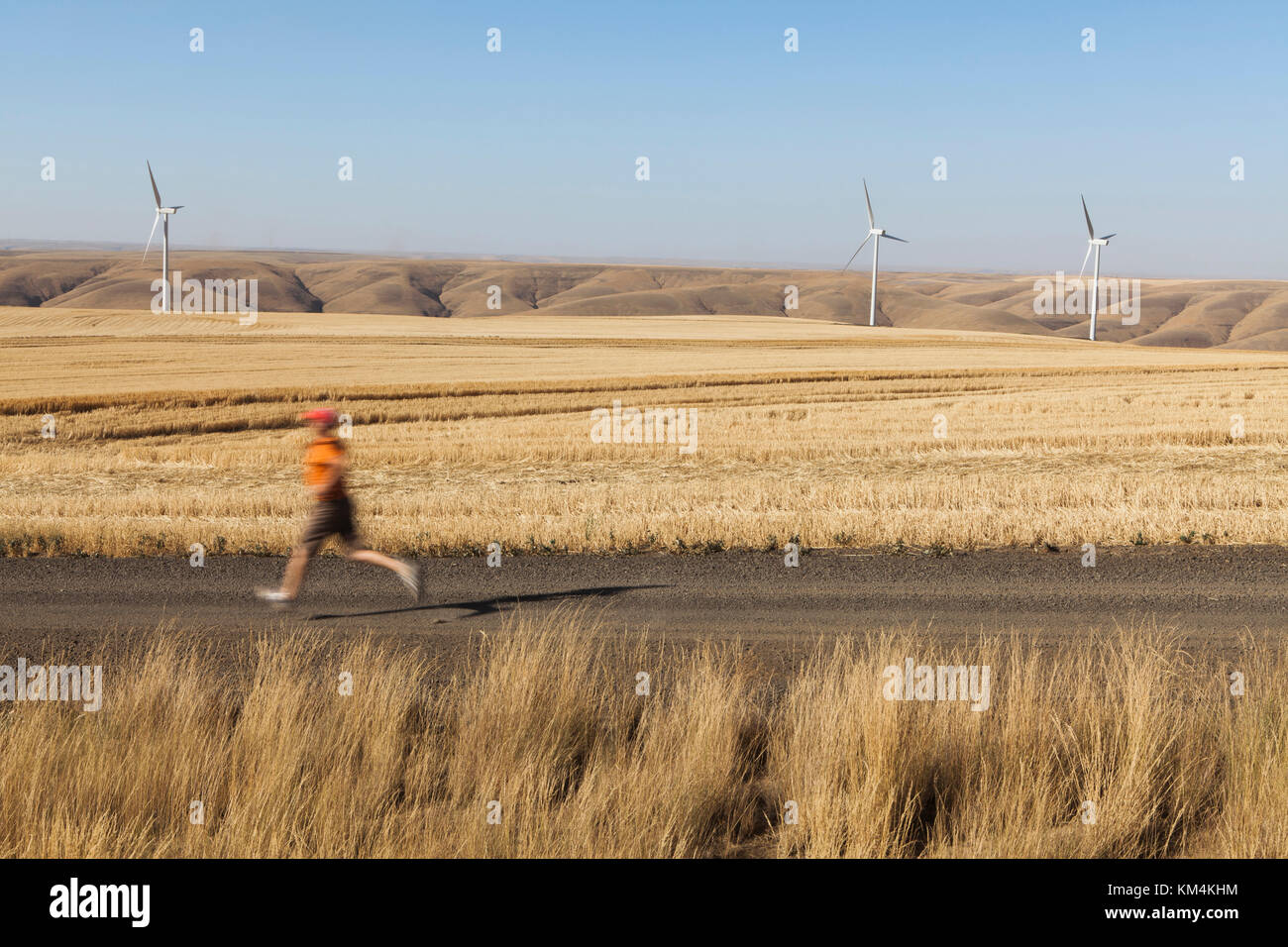 Man jogging on rural road, farmland and wind turbines in distance, Washington - Stock Image