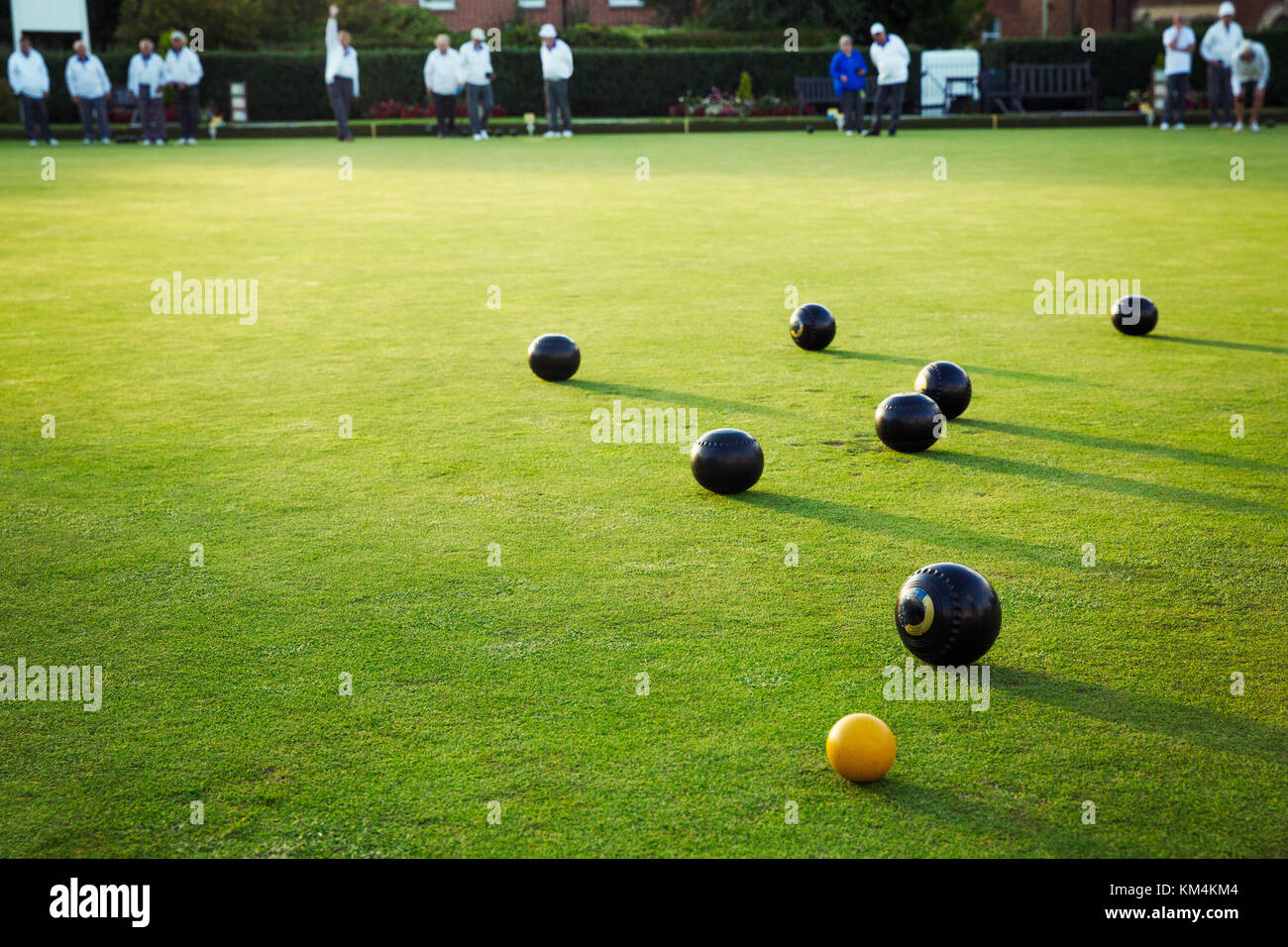 A small yellow target jack ball and a cluster of lawn bowls around it. - Stock Image