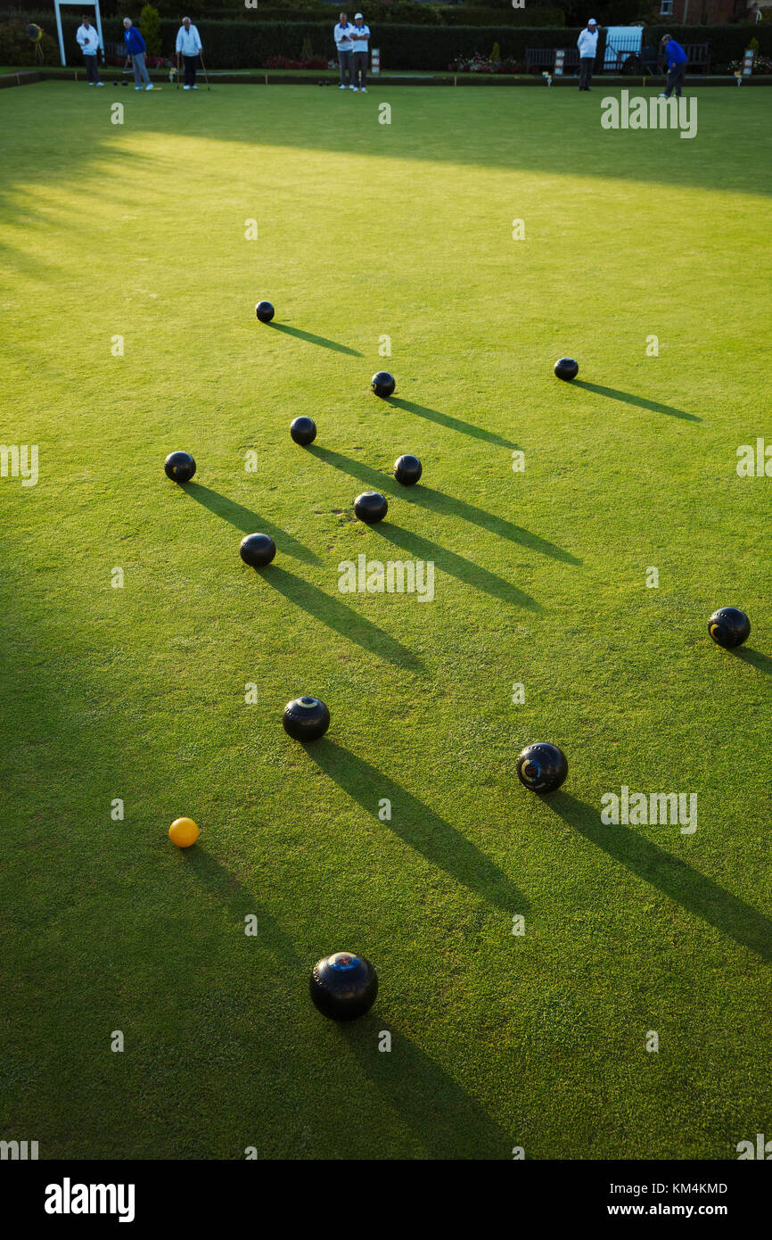 Lawn bowls balls positioned on a smooth playing surface, a bowls green. One small yellow jack ball. Late sun casting - Stock Image
