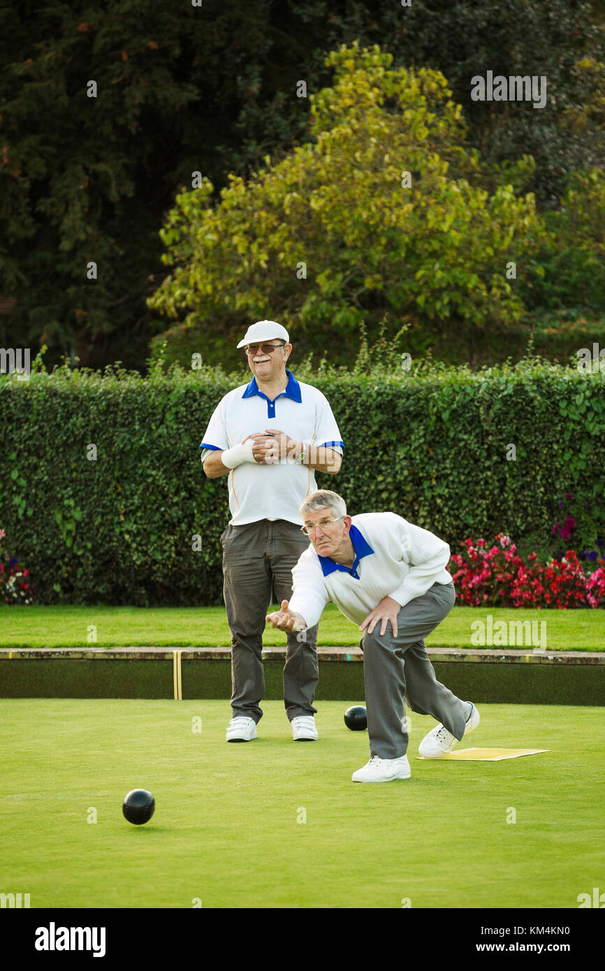 Two men playing lawn bowls, one standing and one bending down to deliver a ball,rolling the ball across the green - Stock Image