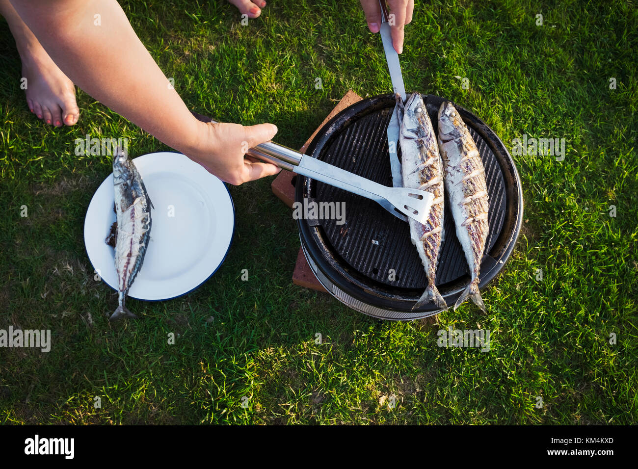 A woman barbequeing two fresh mackerel fish on a small grill, turning the fish. - Stock Image