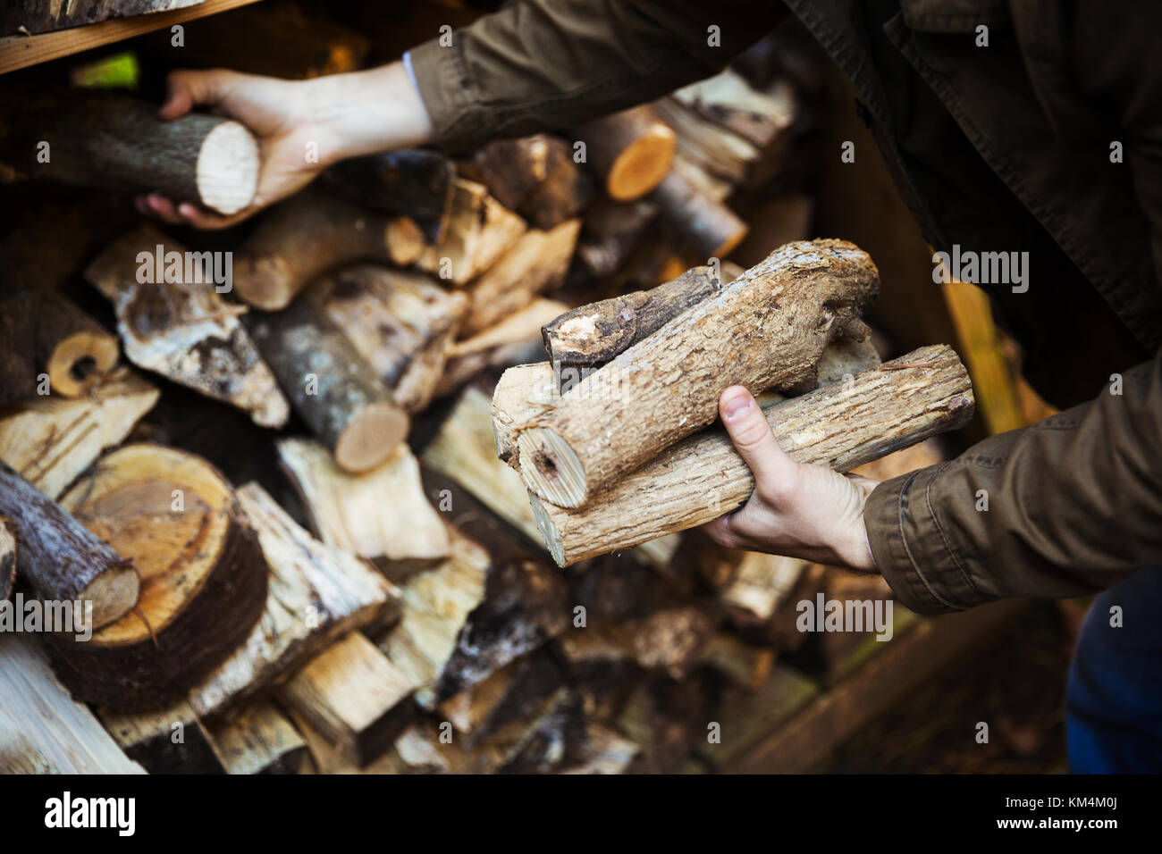 A man stacking logs, wood of different lengths. A firewood store. - Stock Image