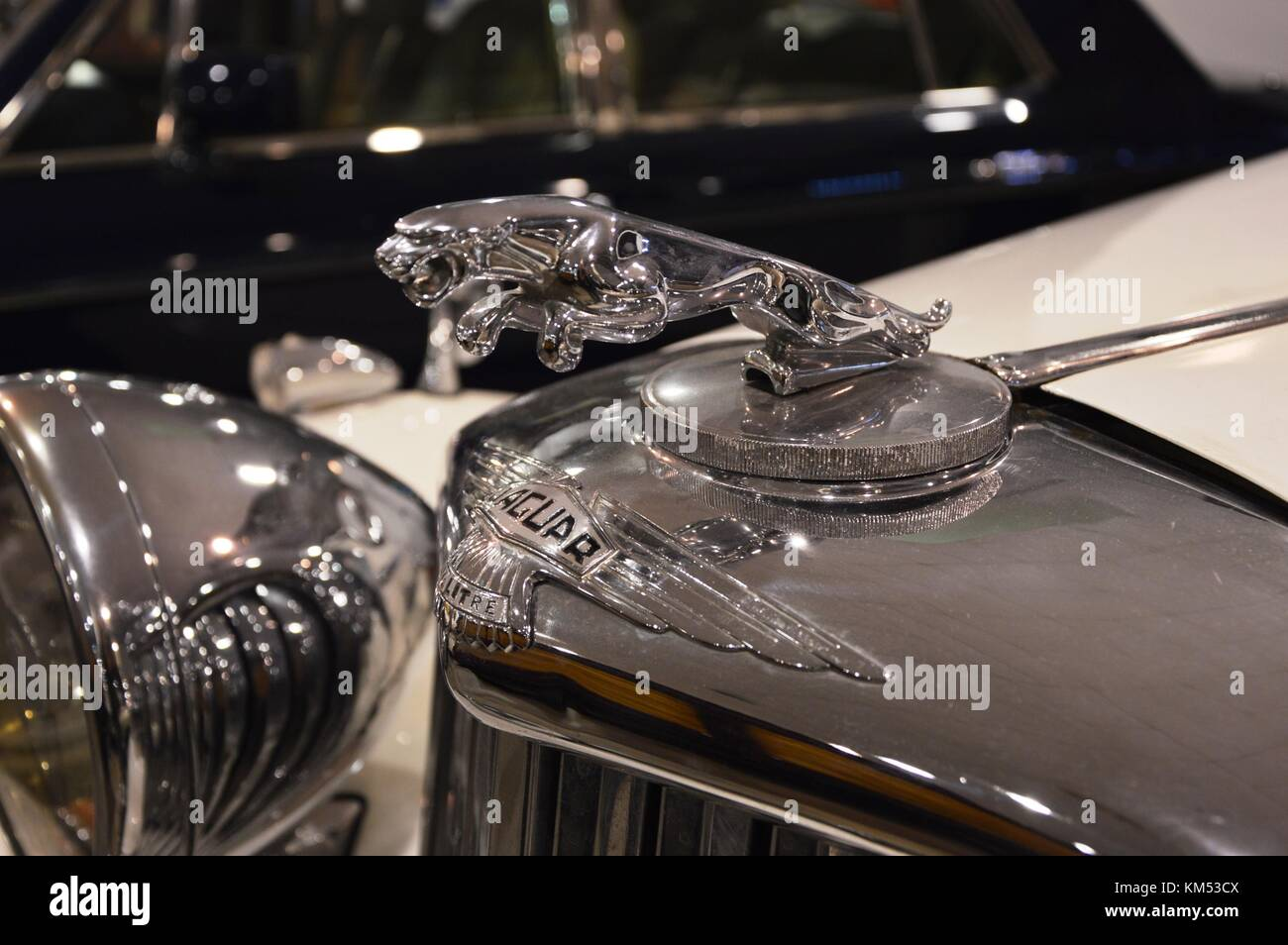 1954 Jaguar D Type Stock Photos & 1954 Jaguar D Type Stock ...