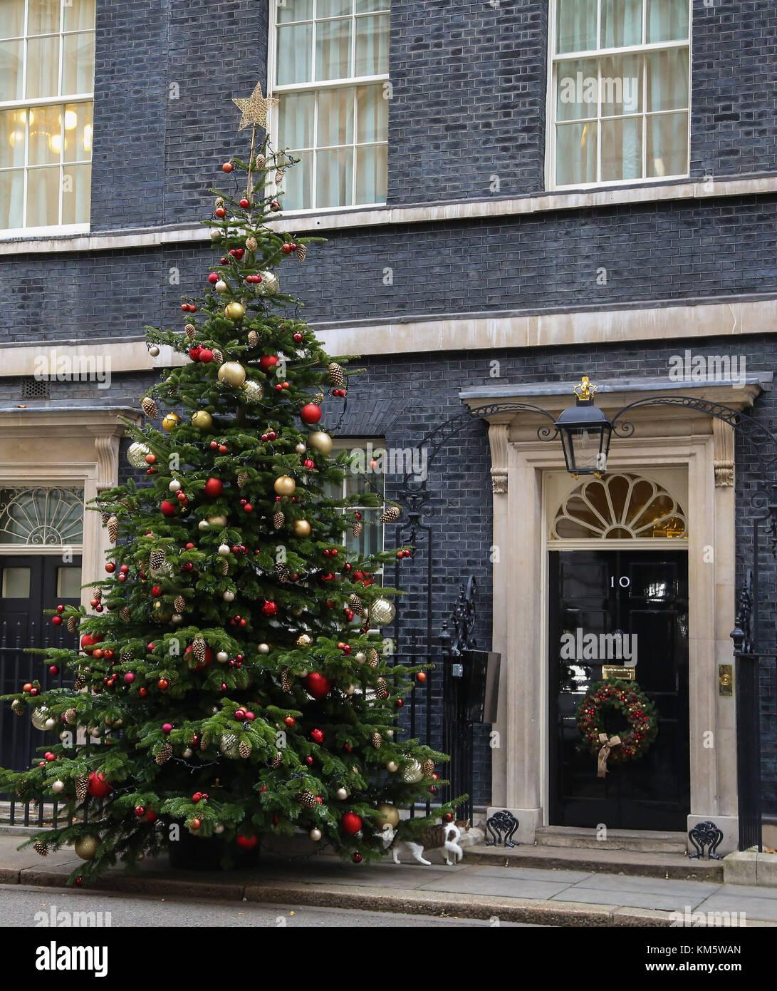 National Christmas Tree Growers Association