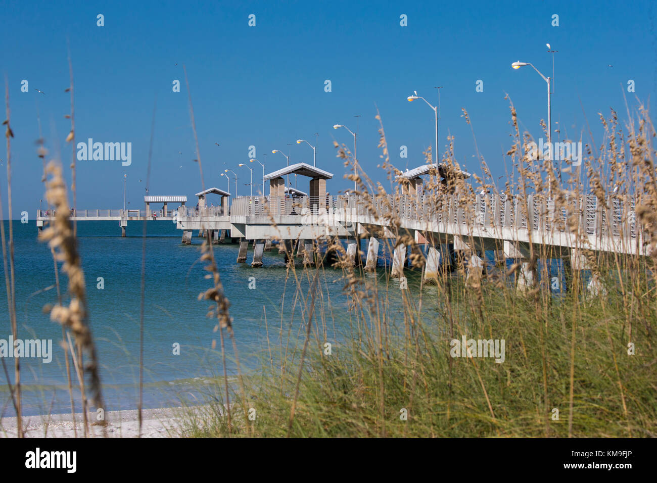Florida fishing pier stock photos florida fishing pier for Fort desoto fishing pier