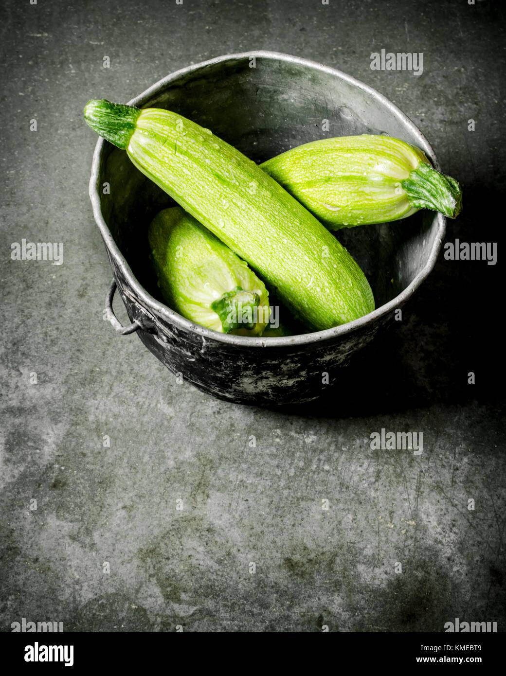 courgette plant pot stock photos courgette plant pot stock images alamy. Black Bedroom Furniture Sets. Home Design Ideas