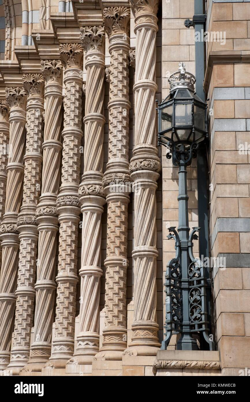 Detail of Door at National History Museum, London - Stock Image