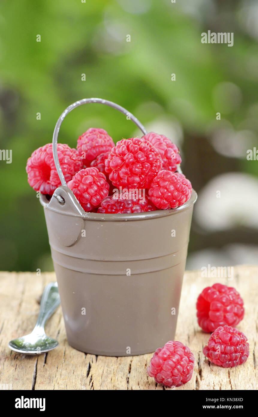 raspberry on old wood shoot in studio. - Stock Image