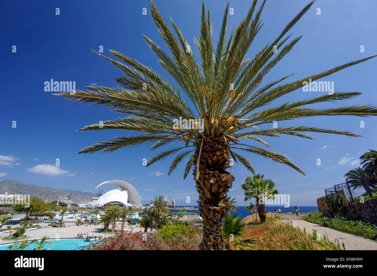 Auditorium by  Santiago Calatrava , Parque Maritimo, Santa Cruz, Tenerife, Canary Islands, Spain, Europe - Stock Image
