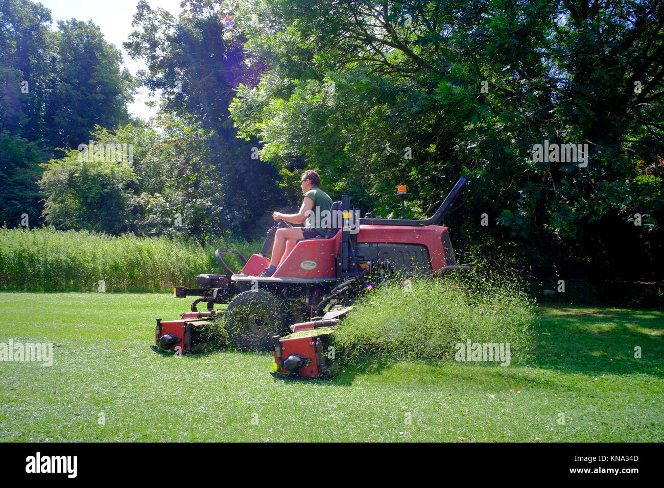 Ride on lawn mower stock photos ride on lawn mower stock for Lawn mower cutting grass