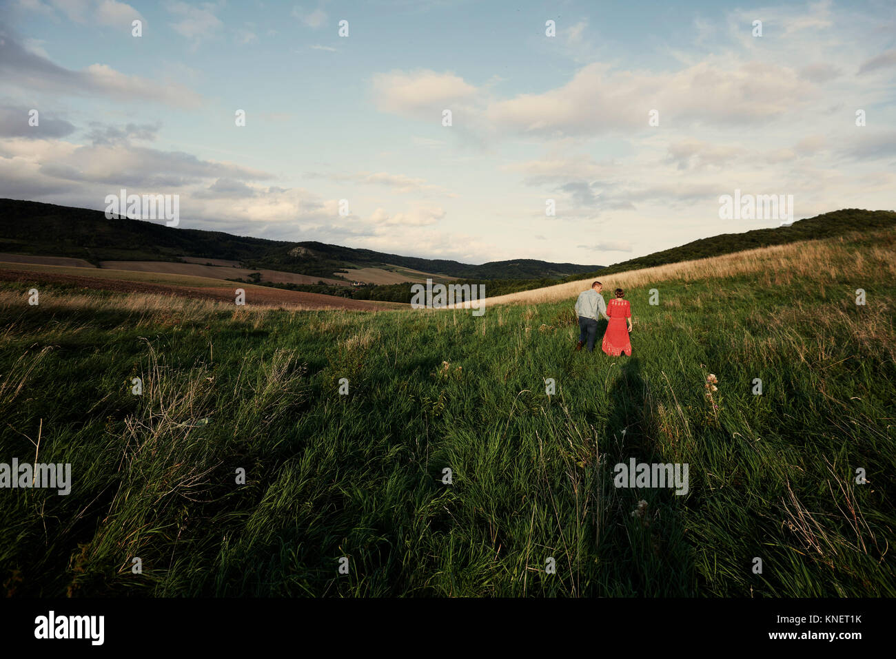Rear view of mid adult couple holding hands while strolling in fields - Stock Image