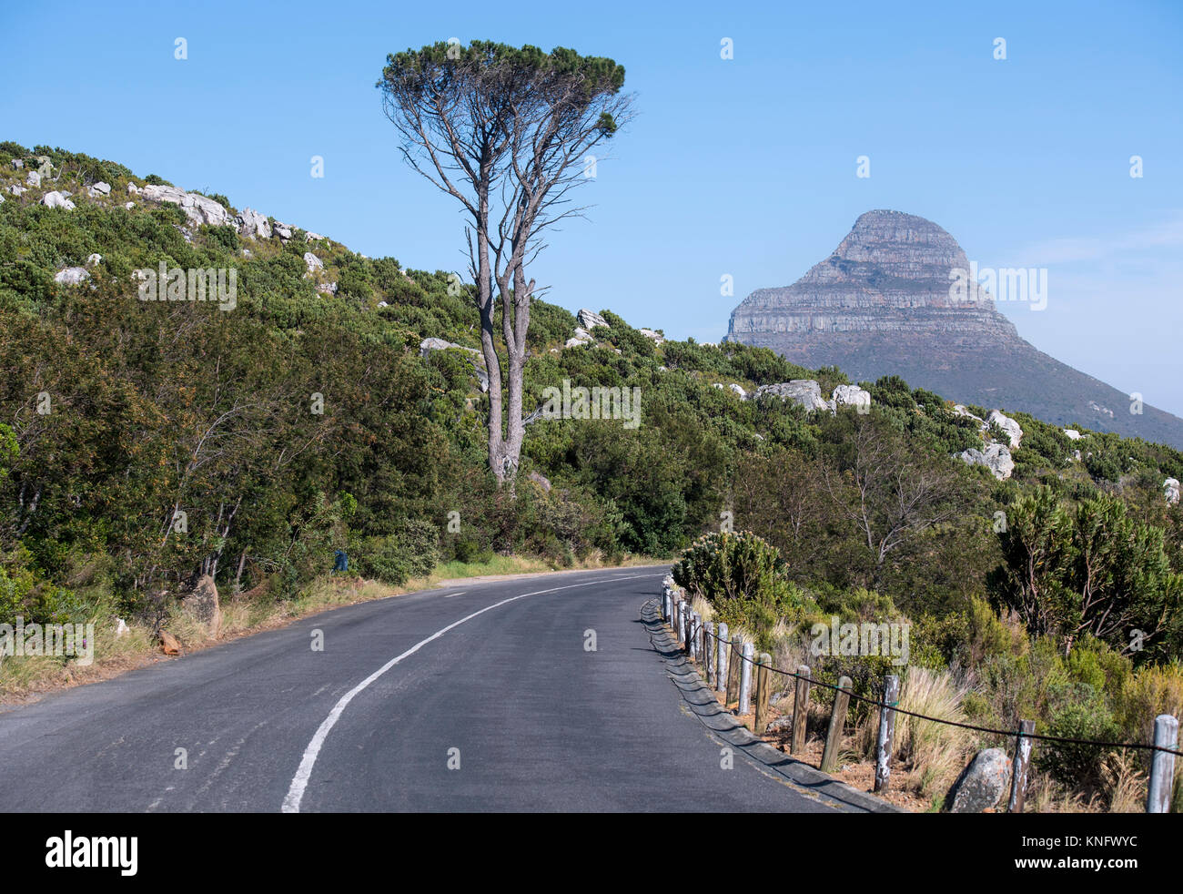 The road below Table Mountain in Cape Town, South Africa, with Lion's Head in the distance - Stock Image