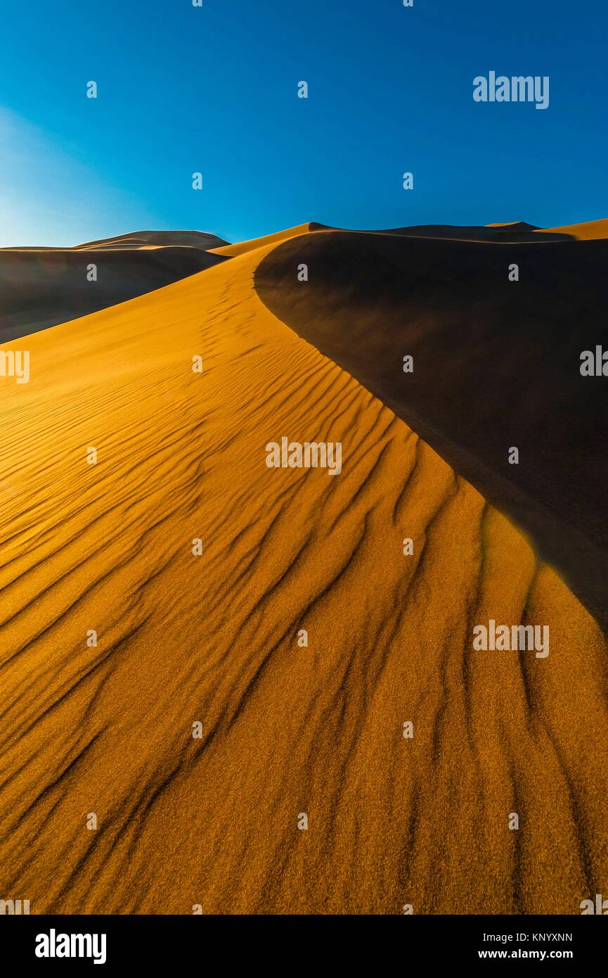 Great Sand Dunes National Park and Preserve, near Mosca, Colorado USA. The park contains the tallest sand dunes - Stock Image