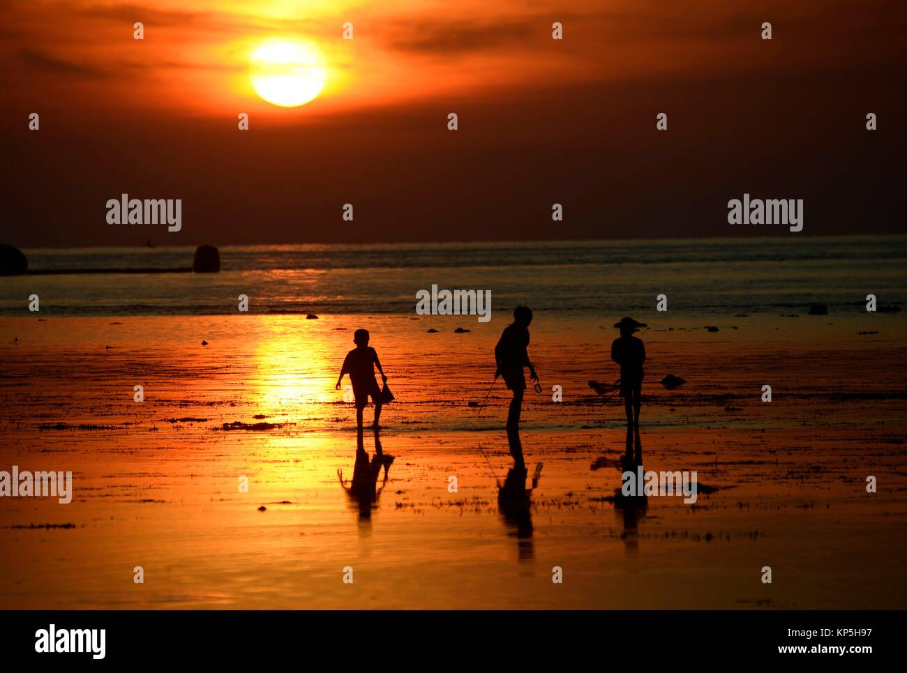 Lovina Stock Photos & Lovina Stock Images - Alamy