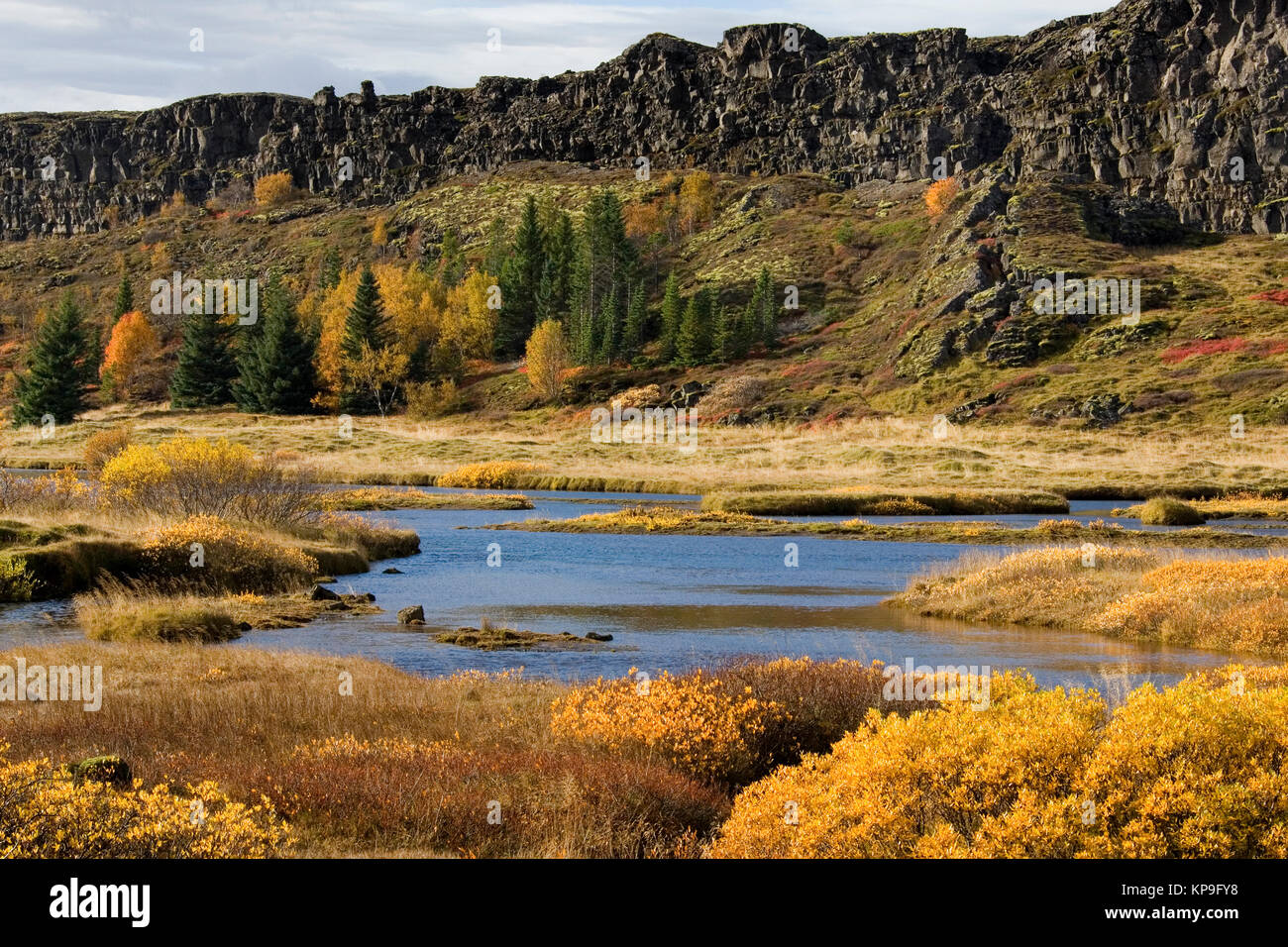 Part of the rift valley at Pingvellir in Iceland. Caused by volcanic activity and continental drift of the North - Stock Image