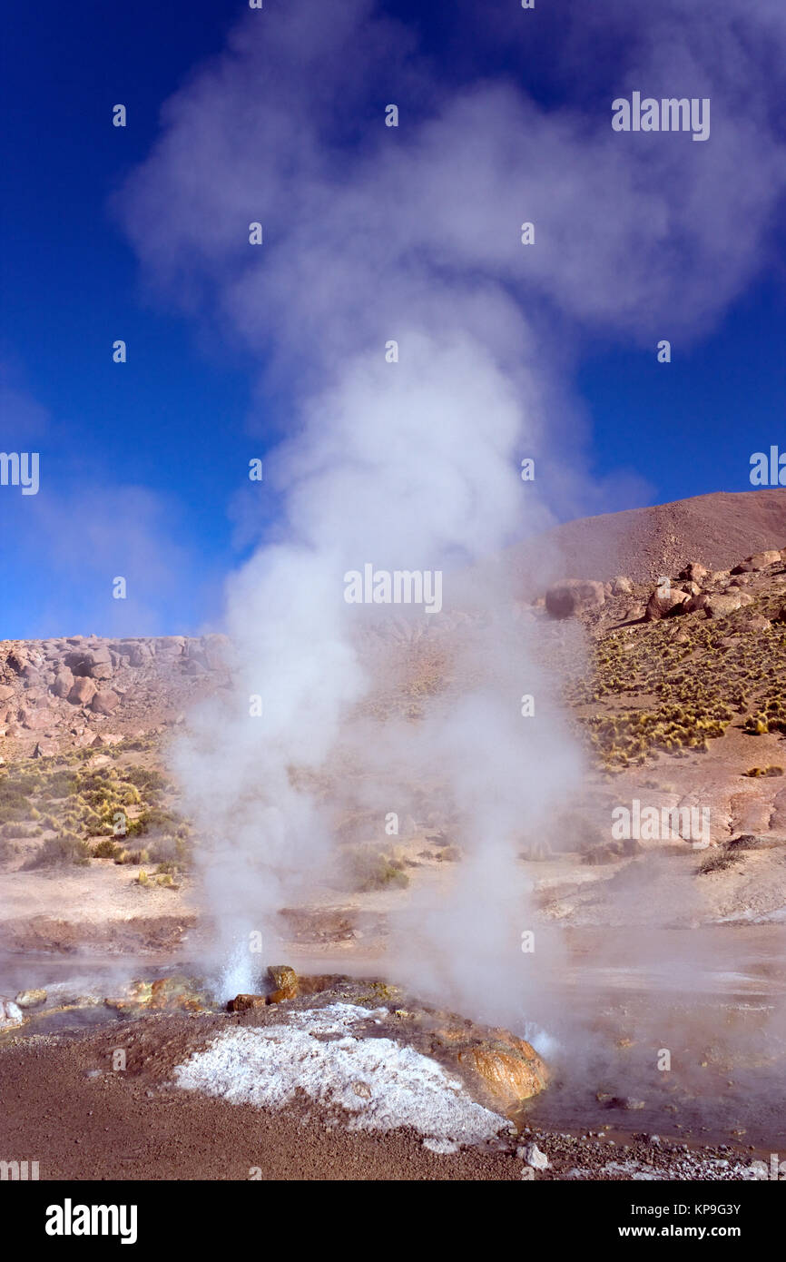 Geyser at the El Tatio Geyser Field at 4500m (14764ft) in the Atacama Desert, northern Chile, South America. - Stock Image