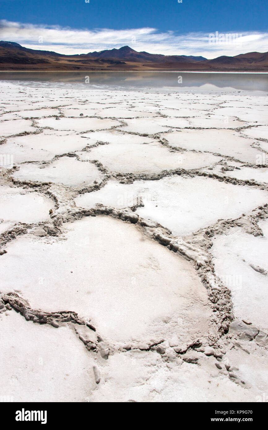 Altiplanic Lagoon and saltpan in the high Andes Mountains in the Atacama Desert, northern Chile, South America. - Stock Image