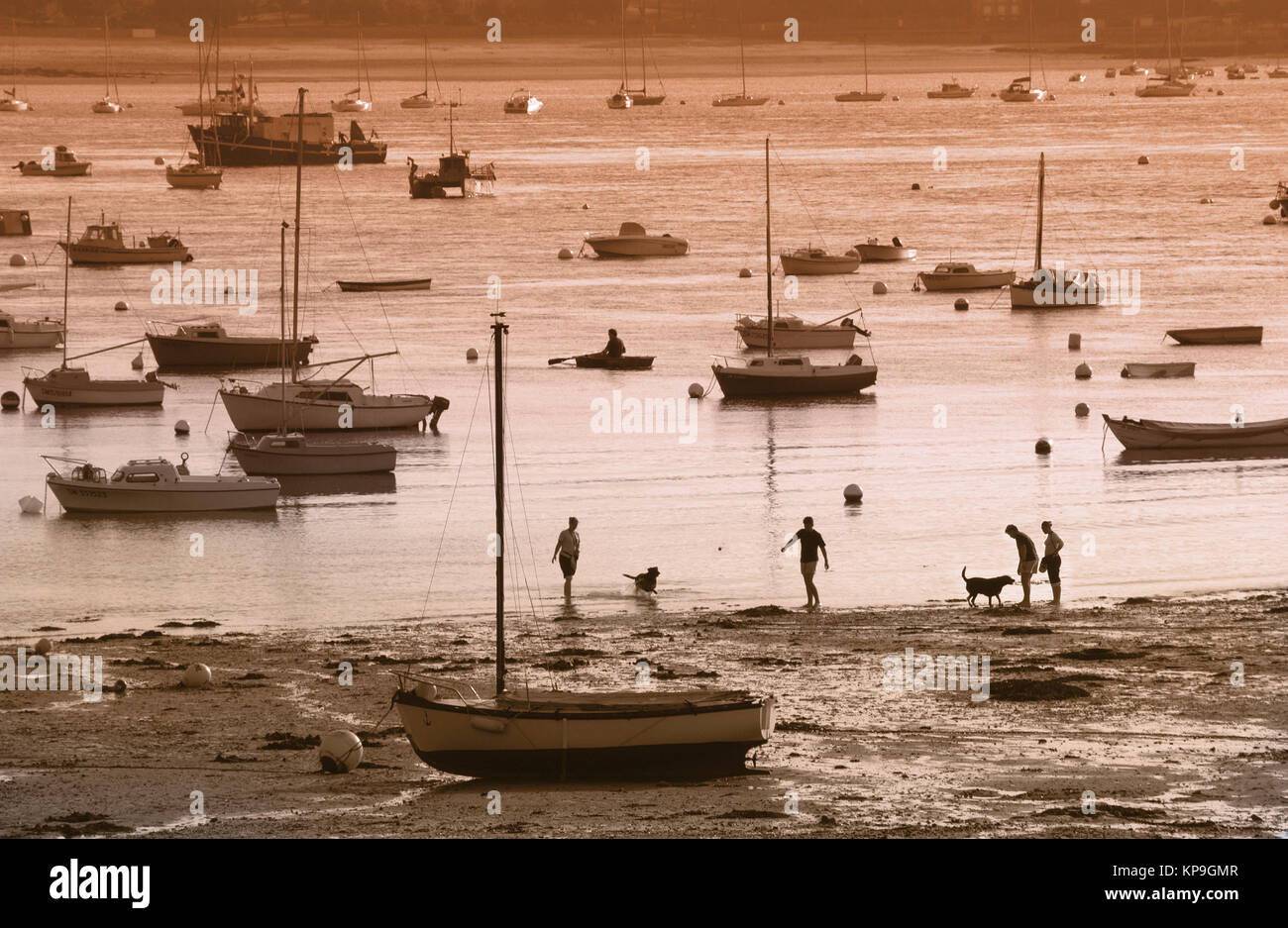 Family playing in the sea at low tide. St Malo (Saint Malo) is a port in Brittany in northwest France. - Stock Image