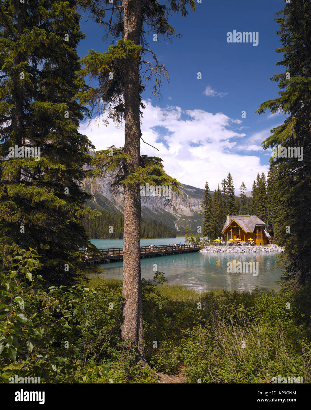 Emerald Lake in Yoho National Park in British Columbia, western Canada. - Stock Image