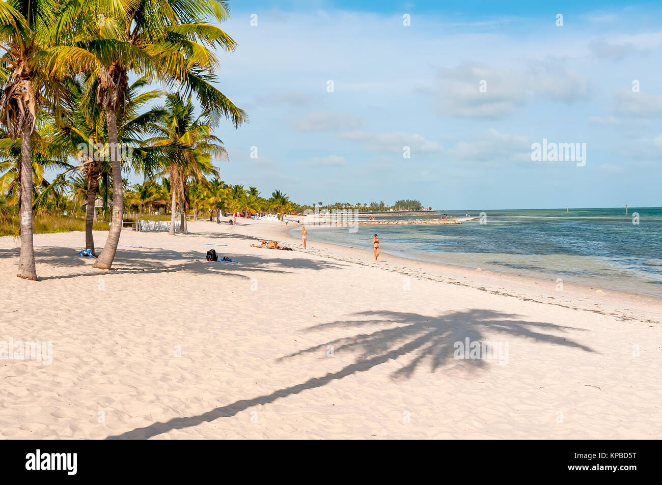 White sand Smathers Beach with palm trees, Key West, Florida - Stock Image