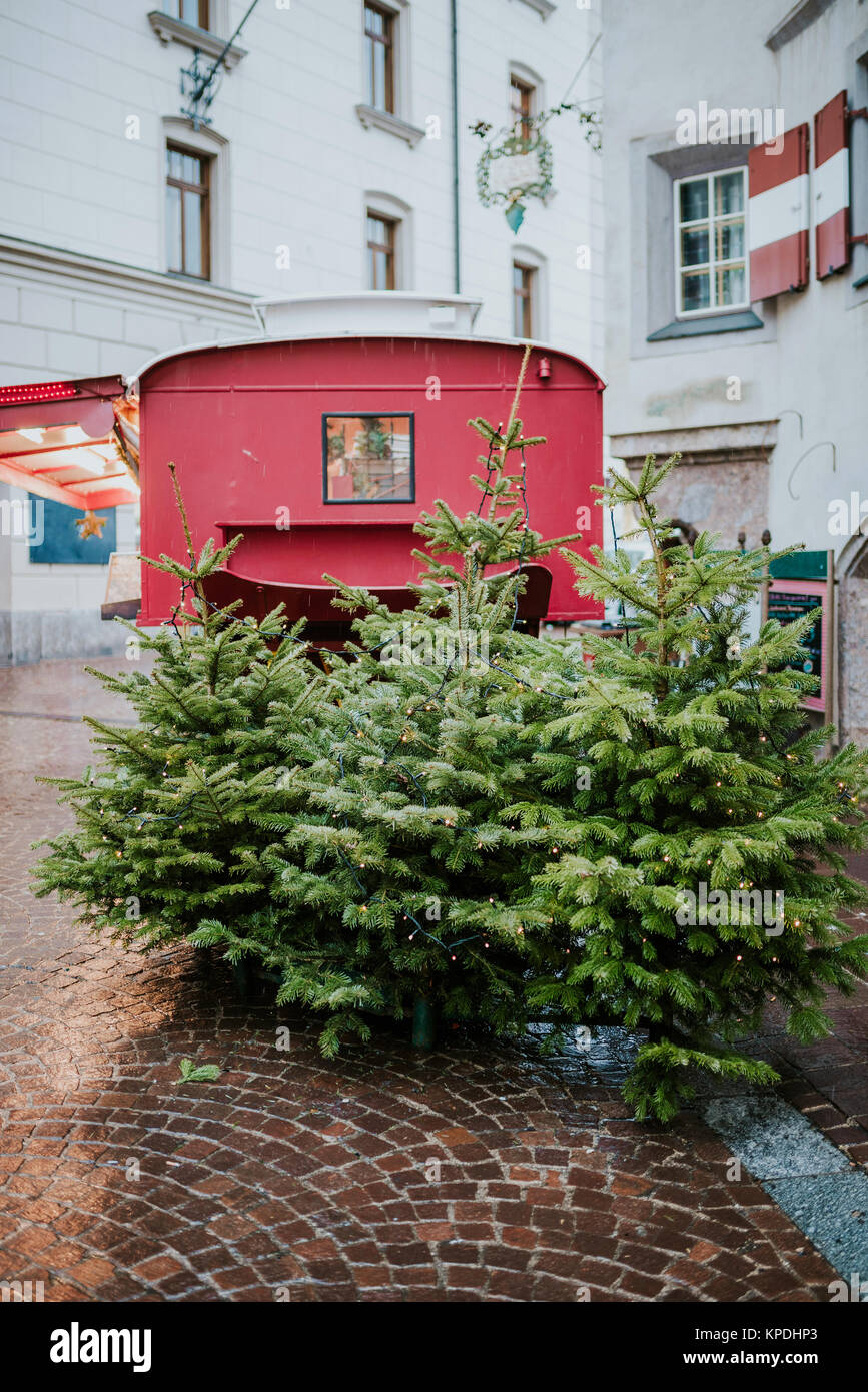 Decorated Christmas trees on the street - Stock Image
