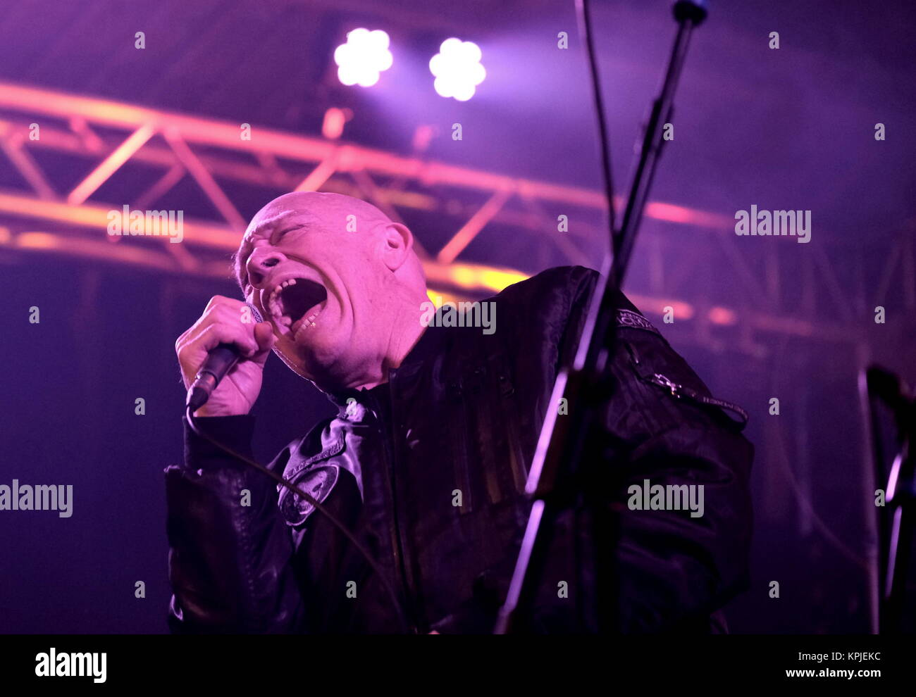 Bad Manners Live Rooms