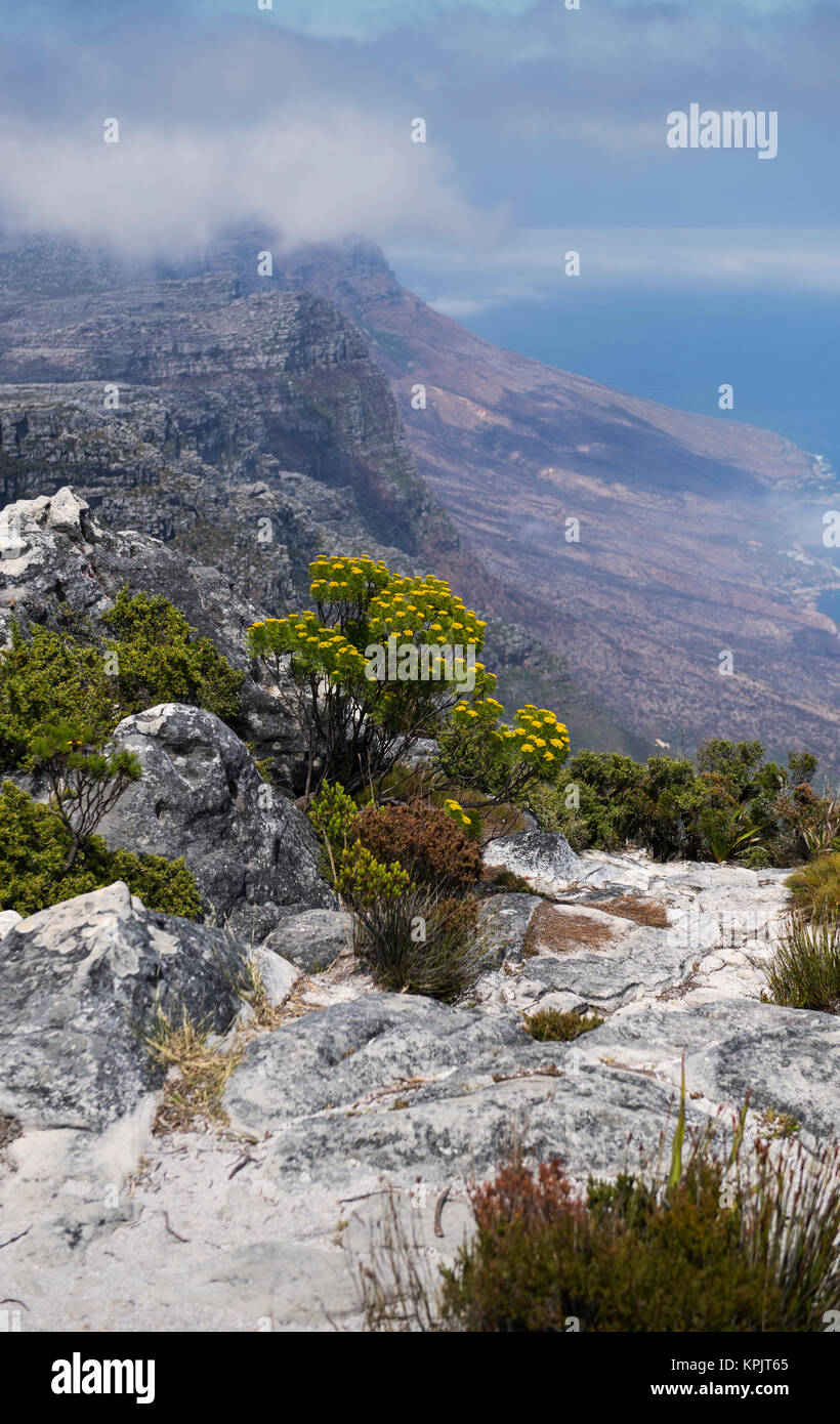 View from the top of Table Mountain in Cape Town, South Africa - Stock Image