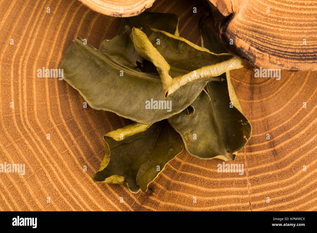 cassia leaf stock photos amp cassia leaf stock images alamy
