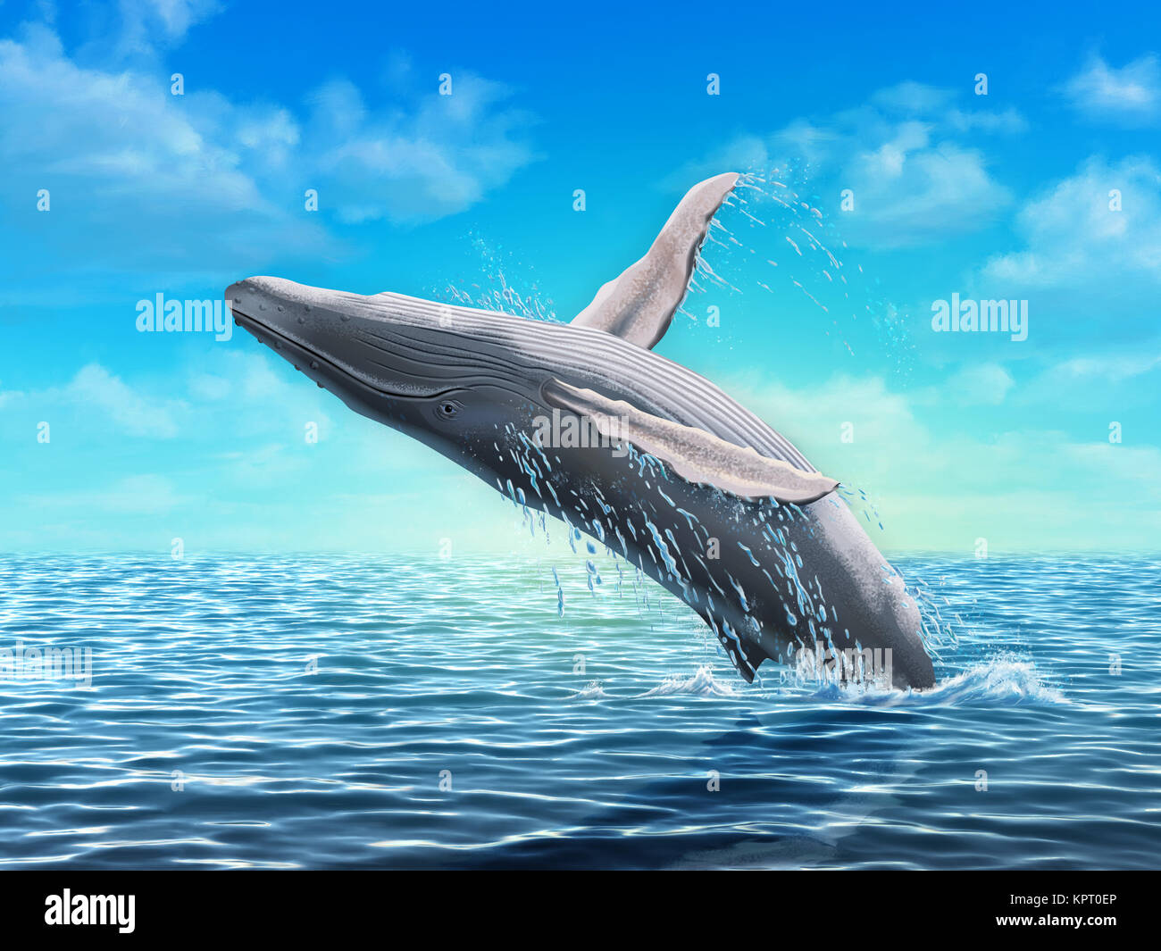 painting whales stock photos amp painting whales stock