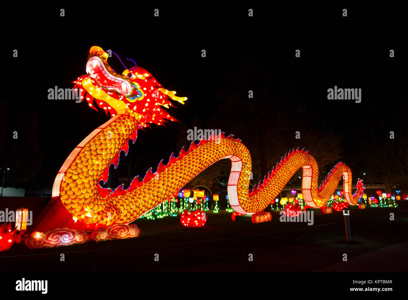 chinese new year night dragon stock photos chinese new year night dragon stock images alamy. Black Bedroom Furniture Sets. Home Design Ideas