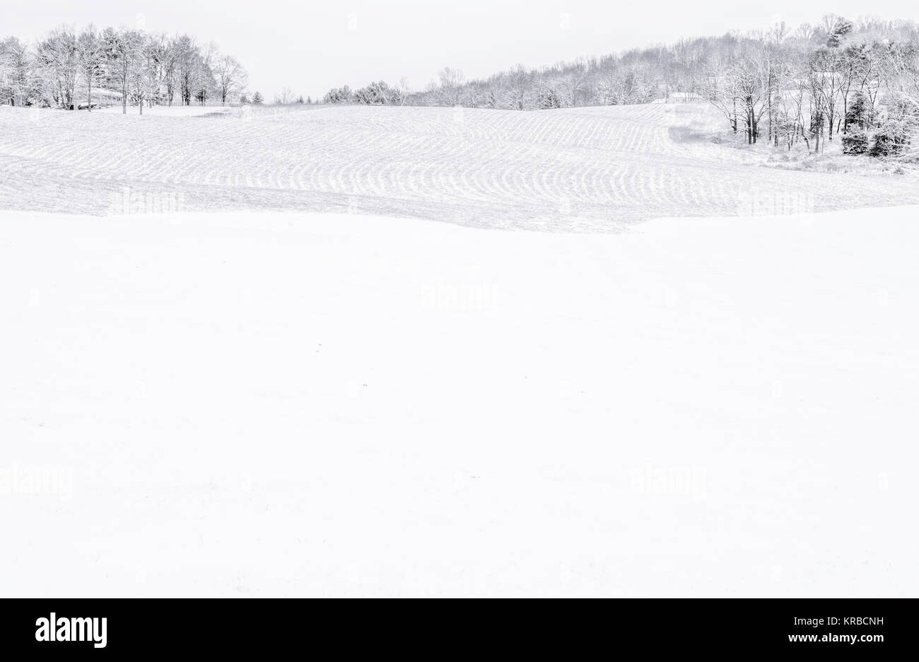 Black and white minimalist background of the winter field in rural New Jersey - Stock Image